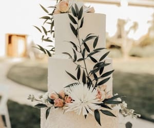 cake, pastry, and wedding image