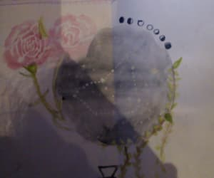 drawing, vine, and roses image