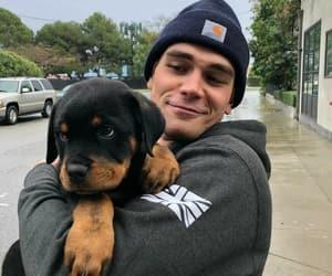 riverdale, dog, and boy image