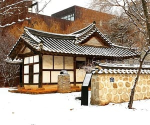 architecture, korea, and traditional image
