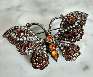 accessories, butterfly, and glam image