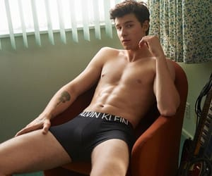 Calvin Klein and shawn mendez image