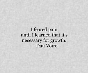 quotes, pain, and book image