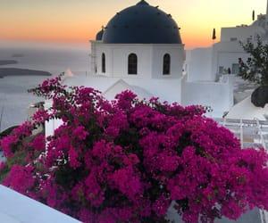 beautiful, flowers, and Greece image