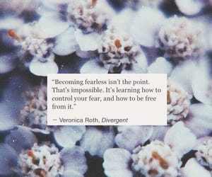 quotes, fear, and divergent image