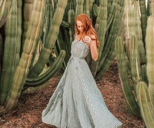 cactus, green, and checkered image