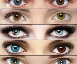 different colours of eyes image