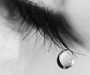 tears of a fairy image