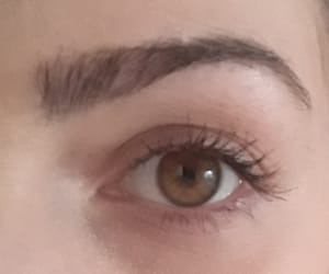 brown eye, eye, and eyebrows image