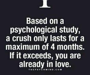 crush, mind, and psychologist image