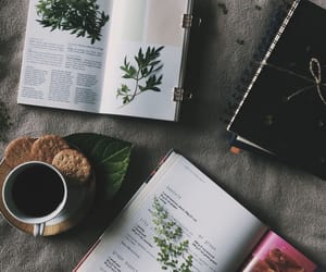 books, coffee, and flat lays image