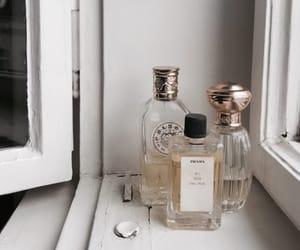 perfume, cosmetics, and Prada image
