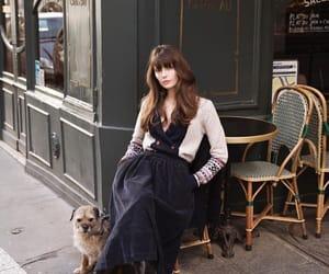 cafe, coffee, and dog image
