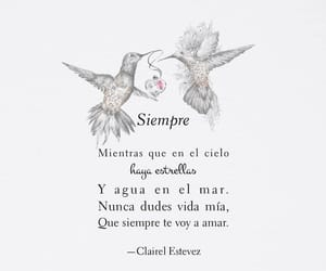 amor, frase, and message image