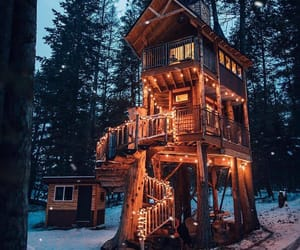 cabin, lights, and forest image