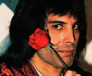 1970s, Freddie Mercury, and 70s image