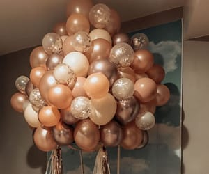 balloons, pomps, and basket image
