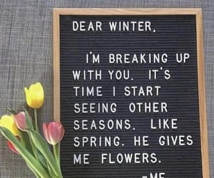 break up, flowers, and life image
