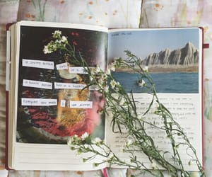 diary, flowers, and journal image