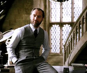 albus dumbledore, harry potter, and gif image