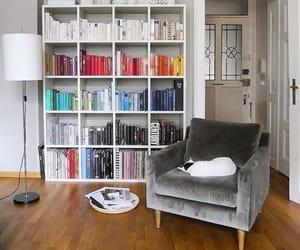 bookshelf, dog, and fashion image