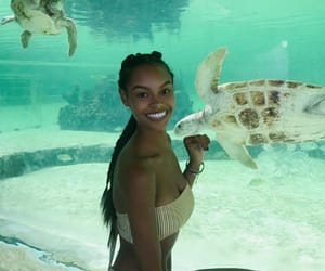 adventure, aquarium, and beauty image