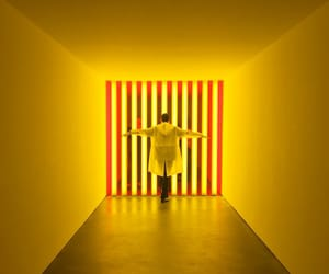 installation, neon, and yellow image