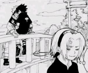 sakura, narusasu, and sasunaru image