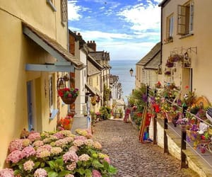 beautiful, britain, and flowers image