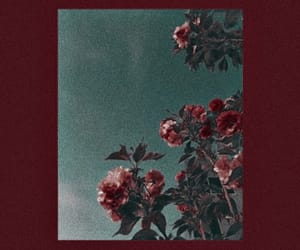 flowers, red theme, and red aesthetic image