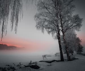fog, landscape, and snow image