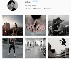 aesthetic, robin, and tumblr image