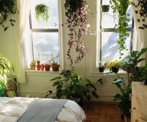 a breath of fresh air, bedroom of greens, and a setting of warmth image