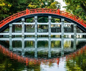 things to do in osaka and top things to do in osaka image