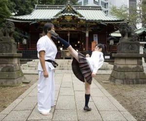 fighting, schoolgirl, and sensei image