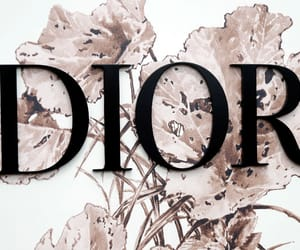 brand and dior image