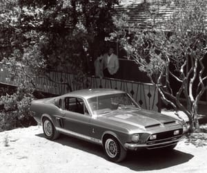 muscle cars, ford mustang, and old timer image