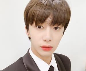 alligator, hyungwon, and chae hyungwon image
