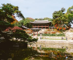korea, south korea, and palace image