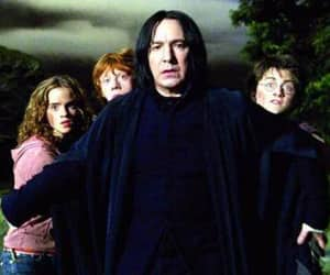 harry potter, snape, and hermione granger image