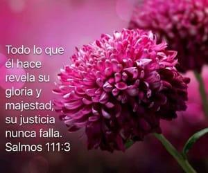 gloria, justicia, and salmos 111:3 image