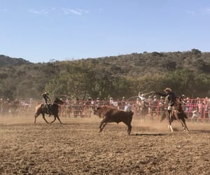 mexico, del rancho, and Vaqueros image