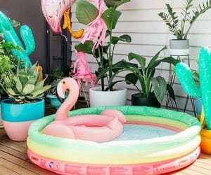 decorations, flamingos, and party image