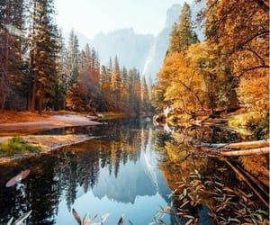 nature, autumn, and view image
