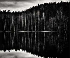 b&w, reflection, and black and white image