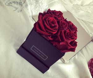 box, flowers, and lifestyle image