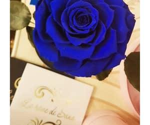Bleu, lovely, and cadeau image