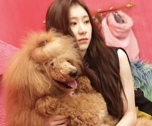 kpop, lee chaeryeong, and itzy image