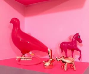 curiosities, objects, and pink image