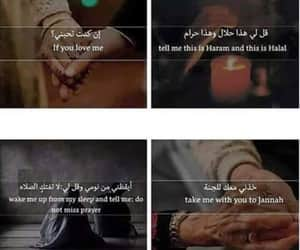 arabic, qoute, and love image